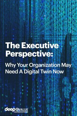 the executive perspective (1)